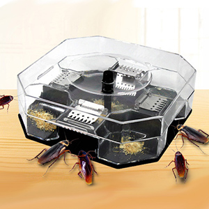 Image result for cockroach trap